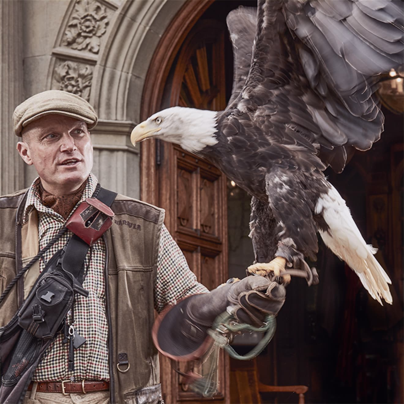 Activities Falconry at Bovey Castle 01