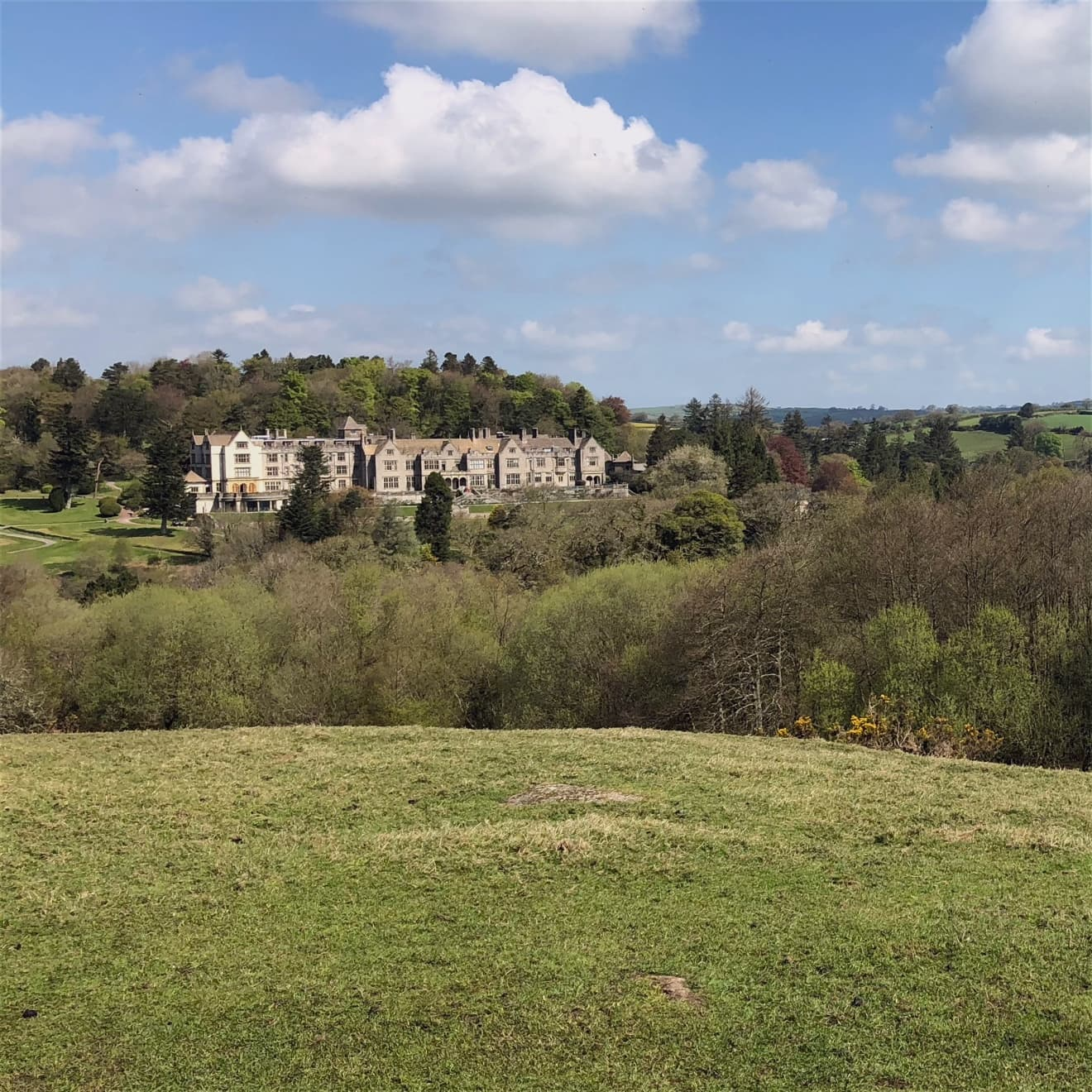 Dartmoor Tours at Bovey Castle