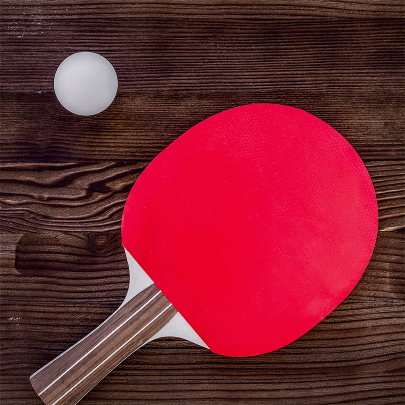 Activities-Table Tennis at Bovey Castle 01