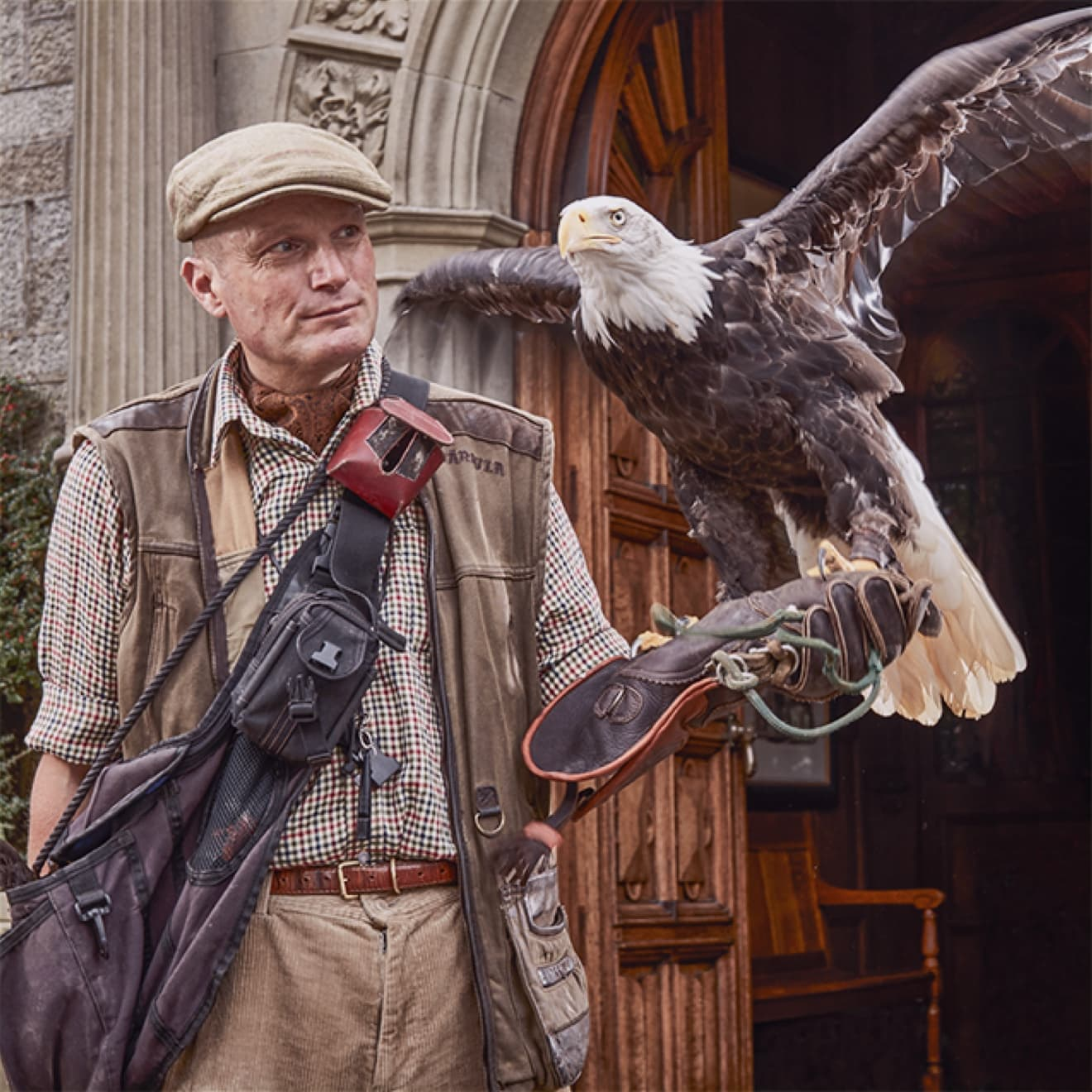 News Top Flight Falconry Experience in England Bovey Castle 01