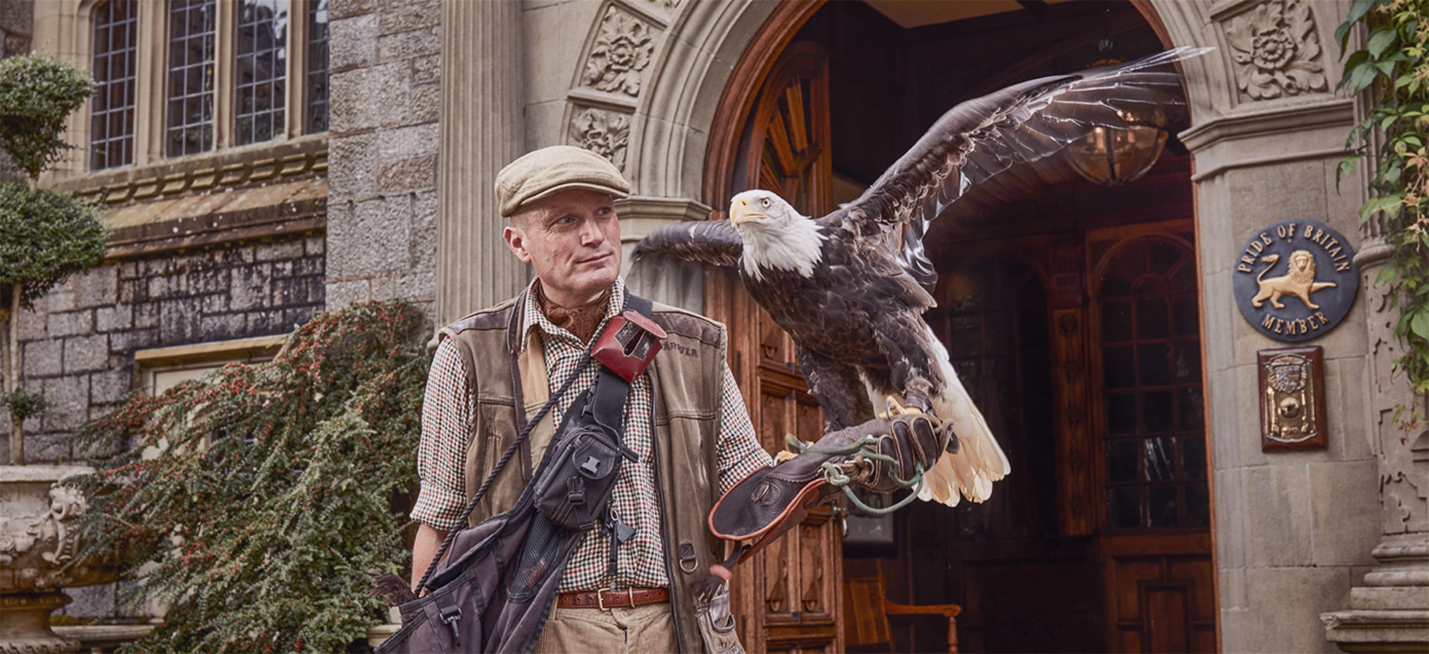 Top Flight Falconry Experience In England Bovey Castle