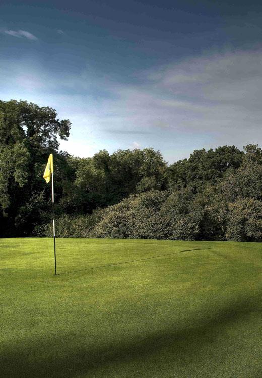 golf course in Devon