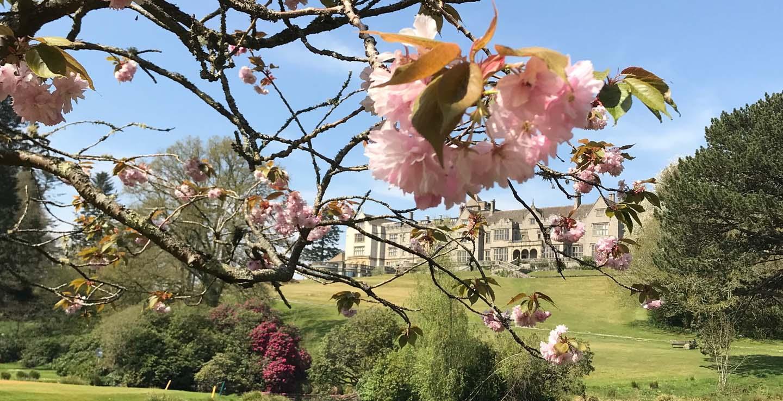 dartmoor spring staycation